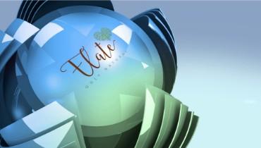 Sphere Flower Logo Intro for Elate